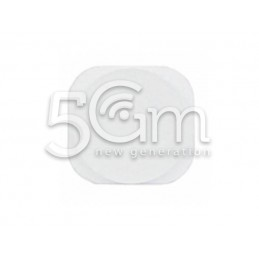 Joystick Esterno Bianco Ipod Touch 5