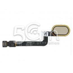 Sensor Fingerprint Gold...